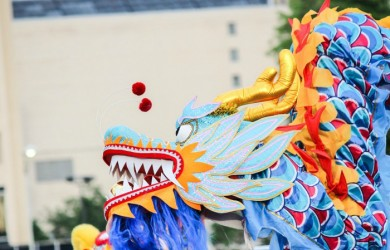 Chinese Dragon for Lunar New Year