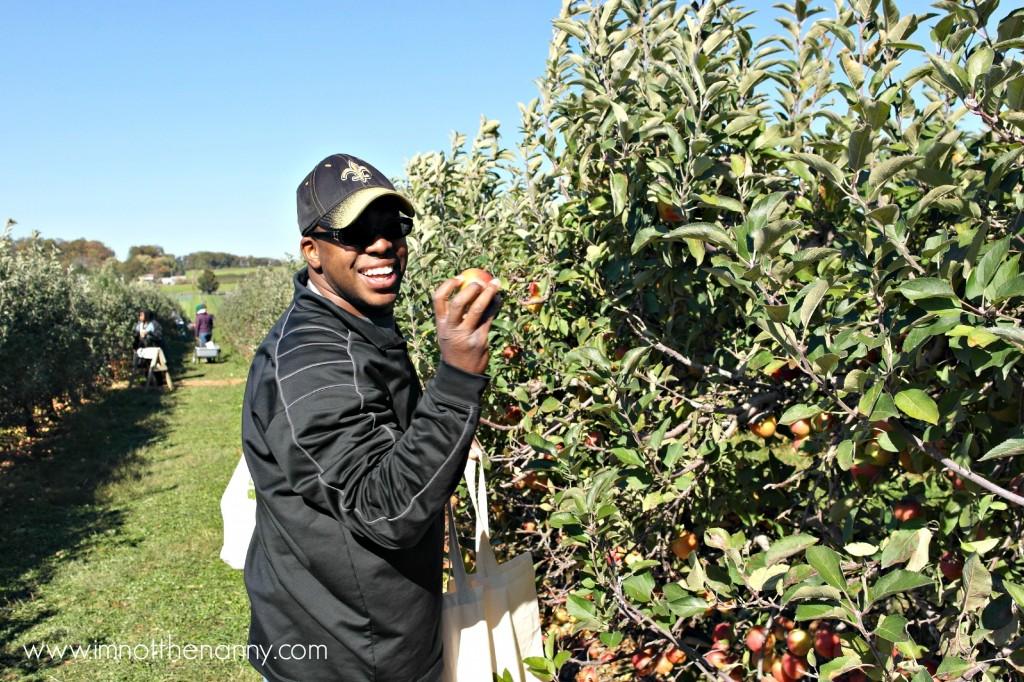 Larriland Farm Apple Picking