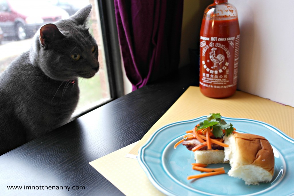 Cat Wants to eat Banh Mi- I'm Not the Nanny