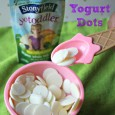 Easy Frozen Yogurt Dots with Stonyfield YoKids Pouches-I'm Not the Nanny