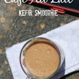Chocolate Chip Cafe Au Lait Kefir Smoothie Recipe-I'm Not the Nanny #shop #KefirCreations