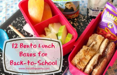 12 Bento Lunch Boxes for Back-to-School-I'm Not the Nanny