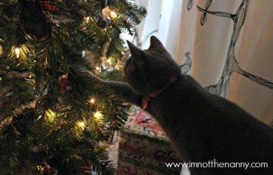 Cat Playing with Christmas Ornaments