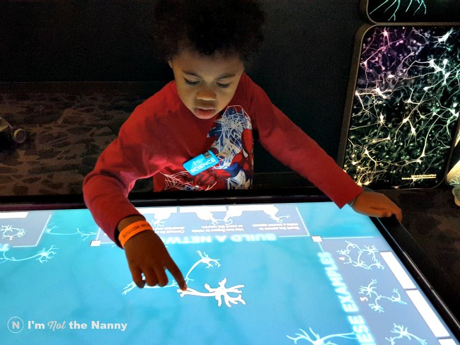 Jaxson matching neurons at Franklin Institute